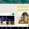 WhatsApp'da GIF-animasiyalar qidiruvi joriy etiladi