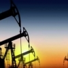 2016 yilda 29ta AQSh neft kompaniyasi inqirozga uchradi