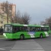 Toshkentning Amir Temur ko'chasidagi avtobus poygalari YTHlar soni oshishiga sabab bo'lmoqda
