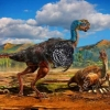 Zamonaviy qushlarning tuxumi nega rangli? Ular dinozavrlar avlodimi?