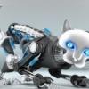 Олимлар нуроний кишиларга кўмак берадиган робот-мушук яратишди