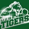 «Uzbek Tigers» Бутунжаҳон бокс сериясидан чиқариб юборилди