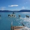 Гренландия музликлари хавотирли тарзда эримоқда (видео)