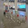 Тошкент аэропорти ҳодими сув оқиши сабабини тушунтирди (видео)