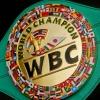 WBC yangilangan reytingida 8 nafar o'zbekistonlik bokschi joy oldi