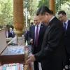 Путин Си Цзиньпиннинг туғилган кунига музқаймоқ совға қилди