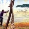 Ҳайвонот боғидаги жирафа бемаъни тасодиф сабабли нобуд бўлди (видео)