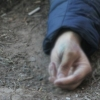 Хатирчида ҳокимни судга берган фермер сирли ўлим топгани айтилмоқда