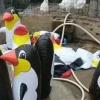 Xitoydagi zooparklarning birida pingvinlar haqiqiy emas, shishirilgan o'yinchoqlar ekanligi aniqlandi