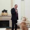 Россияда Президент сайлови яқин: Путин қарорини эълон қилди