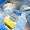 JSST koronavirus pandemiyasi yana qancha vaqt davom etishini taxmin qildi