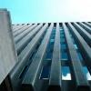 Jahon banki O'zbekistonga 500 million dollar kredit ajratdi