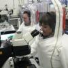 Olimlar: Atipik pnevmoniyaga qarshi vaksina Uxan koronavirusini to'xtatishi mumkin