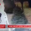 Паркда севишганлардан пул ундириб юрган сохта милиционерлар қўлга олинди (видео)