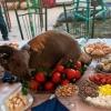 Мақом-2018: Вилоятларнинг пазандачилик санъати намойиш этилди (фото)