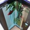 Samsung kvadrat shaklida yig'iluvchi telefonni yaratish ustida ish boshladi
