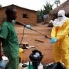 Afrikada yangi halokatli kasallik aniqlandi