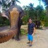 Tailandda fil sayyohning kamerasini tortib oldi va selfiga tushdi