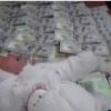 Andijonda 23 kunlik chaqaloqni 4500 dollar va 4 mln so'mga sotayotgan ona qo'lga olindi (video)