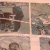 Самарқандда чақалоқларни ваҳшийларча ўлдирган жиноий гуруҳ кирдикорлари (видео)