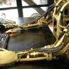 Xitoydagi robot-jurnalist bir soniyada bitta maqola yozadi