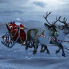 Санта Клаус Самарқандга ташриф буюрди