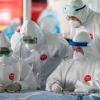 Одамда учрайдиган коронавируслар мавсумий характерга эга
