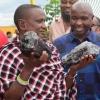 Танзаниялик 30 фарзанднинг отаси кам учрайдиган қимматбаҳо тош топиб олиб, миллионерга айланди