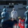 Olimlar koronavirus pandemiyasi «aybdorlari»ni ma'lum qildi