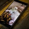 Yirik operativkali eng kuchli smartfonlar - Top-5