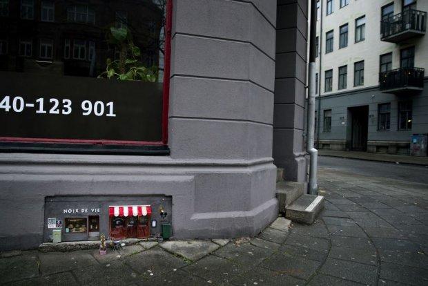 Швецияда «сичқон ресторани» очилди