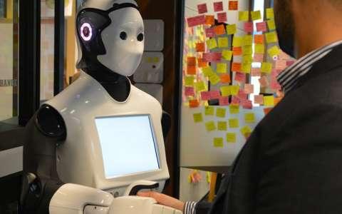 Австралия дўконларида илк робот-ёрдамчилар хизмат қилишни бошлади