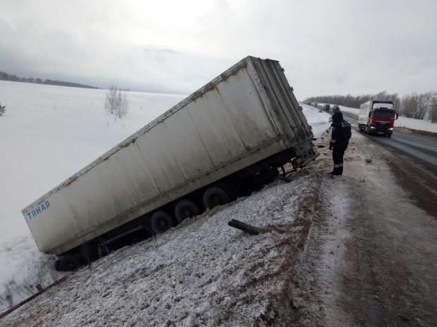 Россияда йўлбарсларни олиб кетаётган юк машинаси йўл-транспорт ҳодисасига учради