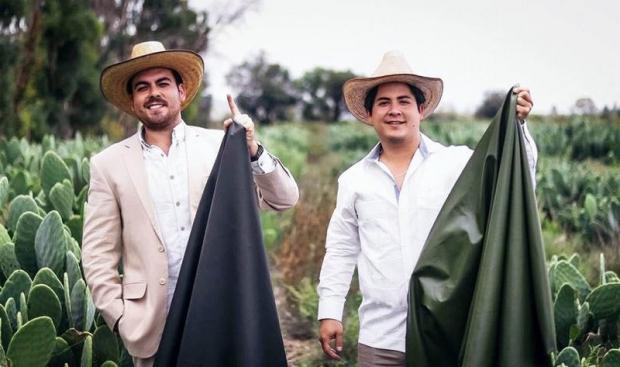 Икки мексикалик йигит кактусдан чарм олиш йўлини ихтиро қилди