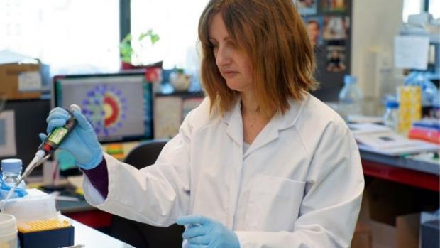 Koronavirus: Vaksina qachon paydo bo'ladi?