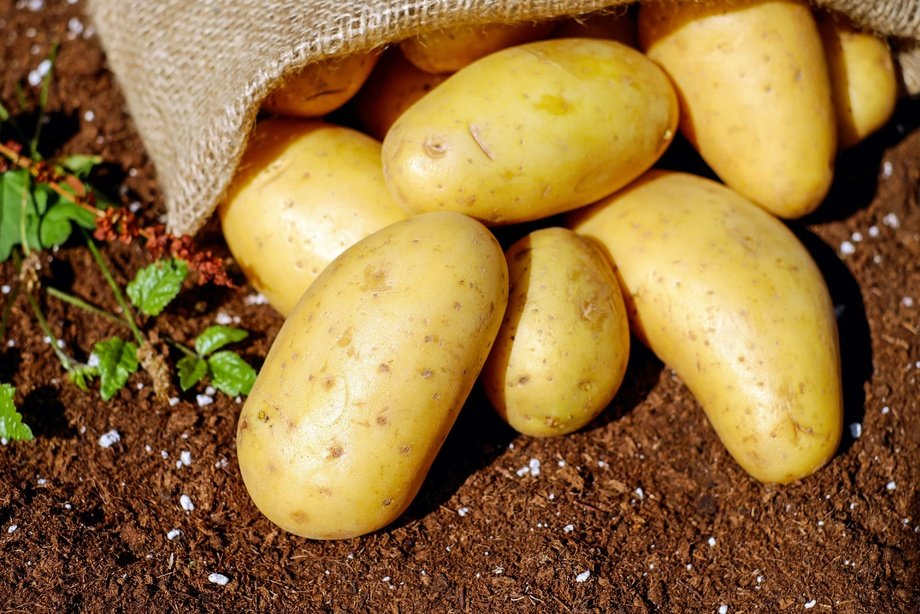 Шифокор картошканинг саломатликка зараридан огоҳлантирди