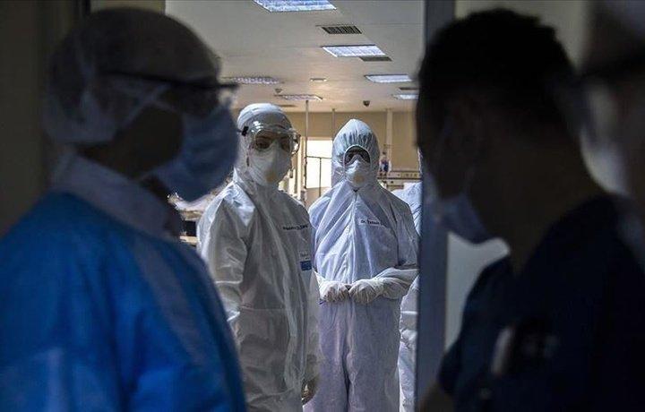 O'zbekistonda o'tgan bir sutka ichida yana 179 kishida koronavirus aniqlandi